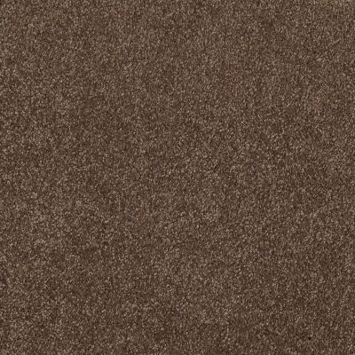 Shaw Floors Value Collections That's Right Net Sedona 00708_E0925