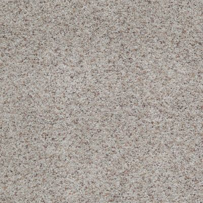 Shaw Floors Value Collections What's Up Net Sandstone 00153_E0926