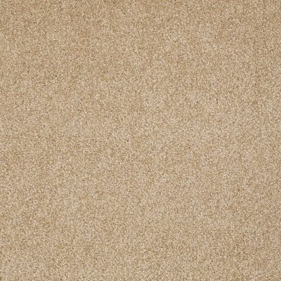 Shaw Floors Value Collections What's Up Net Oakwood 00200_E0926