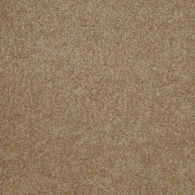 Shaw Floors Value Collections What's Up Net Bridgewater Tan 00709_E0926