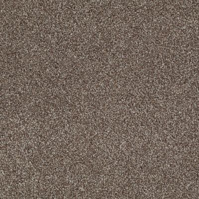 Shaw Floors Value Collections What's Up Net Saddle 00718_E0926