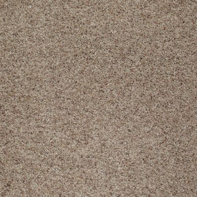 Shaw Floors Value Collections What's Up Net Stunning 00751_E0926