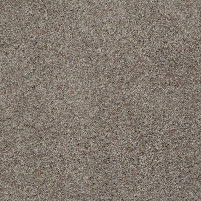 Shaw Floors Value Collections What's Up Net Vintage 00752_E0926
