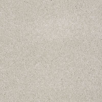 Shaw Floors Value Collections You Know It Net Mist 00107_E0927
