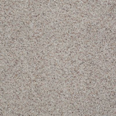 Shaw Floors Value Collections You Know It Net Sandstone 00153_E0927