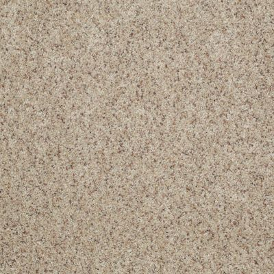 Shaw Floors Value Collections You Know It Net Knapsack 00154_E0927