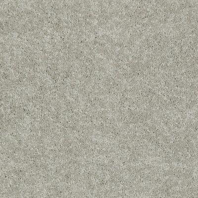 Shaw Floors Dyersburg Classic 15′ Antique Silk 00131_E0948