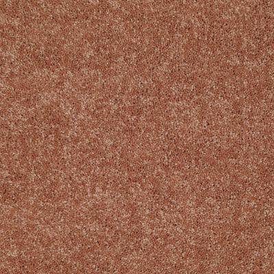 Shaw Floors Dyersburg Classic 15′ Sunburst 00630_E0948
