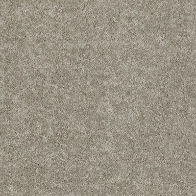 Shaw Floors Dyersburg Classic 15′ Taupe Mist 55792_E0948