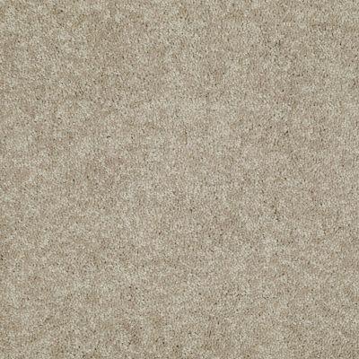 Shaw Floors Dyersburg Classic 15′ Dusty Trail 55793_E0948