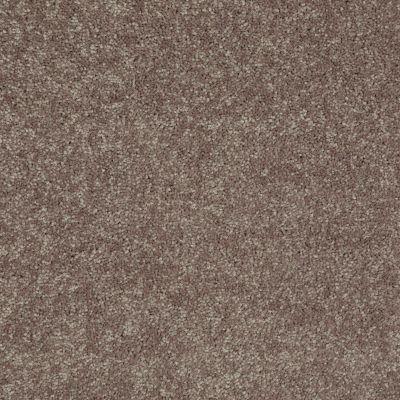 Shaw Floors Newbern Classic 12′ Suede 00731_E0949