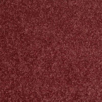 Shaw Floors Newbern Classic 12′ Radiant Orchid 00931_E0949
