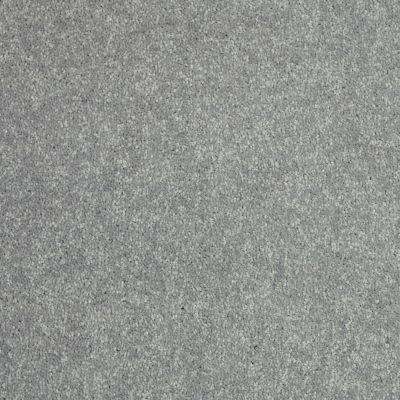 Shaw Floors Newbern Classic 12′ Castle Grey 55501_E0949