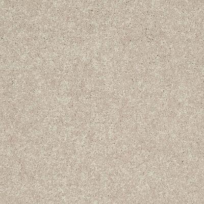 Shaw Floors Newbern Classic 12′ Dove 55700_E0949