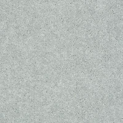 Shaw Floors Newbern Classic 15′ Morning Fog 00530_E0950