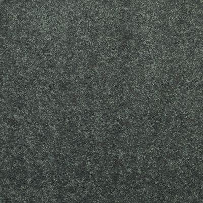 Shaw Floors Newbern Classic 15′ Steel Beam 00534_E0950