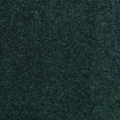 Shaw Floors Newbern Classic 15′ Polo 55301_E0950
