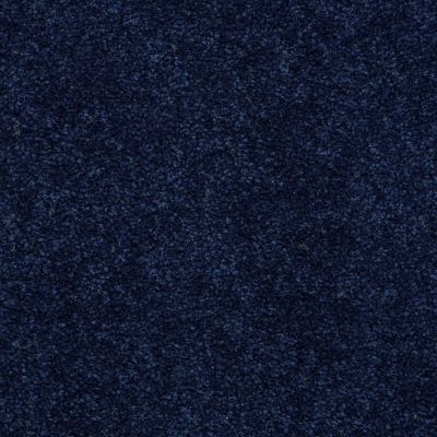 Shaw Floors Newbern Classic 15′ Darkest Denim 55402_E0950
