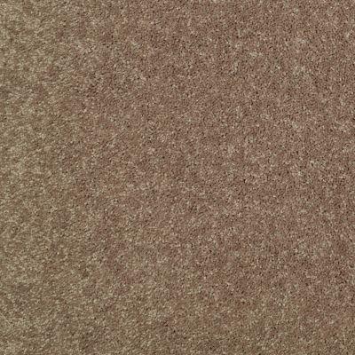 Shaw Floors Newbern Classic 15′ Driftwood 55720_E0950