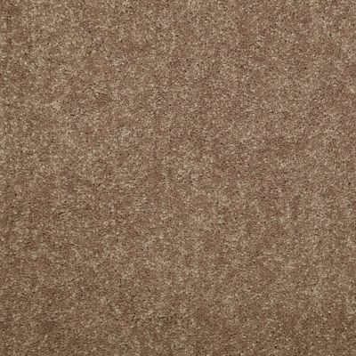 Shaw Floors Newbern Classic 15′ Candied Truffle 55750_E0950