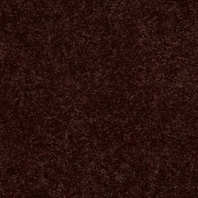 Shaw Floors Newbern Classic 15′ Coffee 55755_E0950