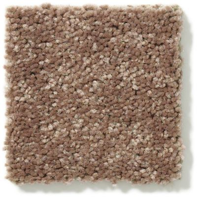 Shaw Floors Newbern Classic 15′ Winter Wheat 55791_E0950