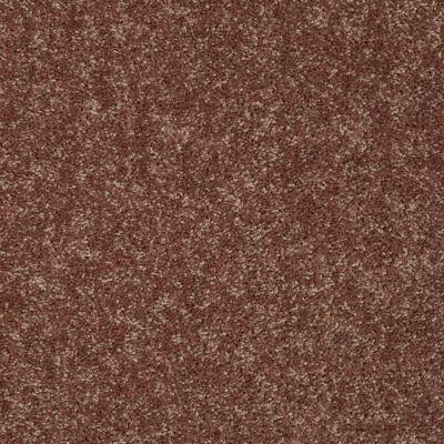 Shaw Floors Briceville Classic 12 Winter Wheat 55791_E0951