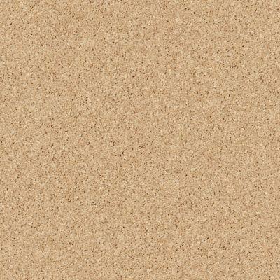 Shaw Floors Briceville Classic 15 Sun Beam 00240_E0952
