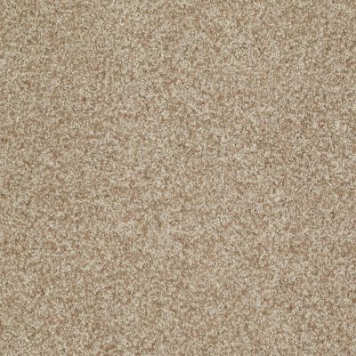 Shaw Floors Value Collections Gran Diego Net Bamboo 00103_E0960