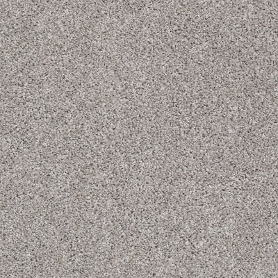 Shaw Floors Adam's Pride (t) Marble 00103_E0972