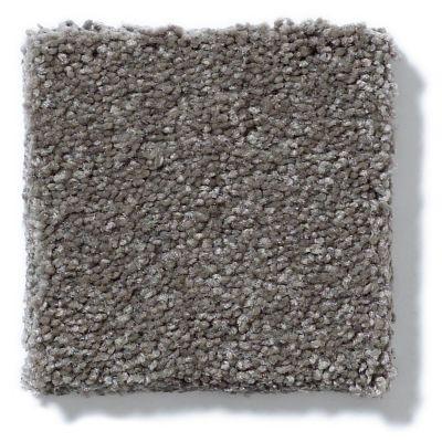 Shaw Floors Anso Open I (s) Stone Hearth 00703_E0986