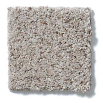 Shaw Floors Anso Open I (b) Sandstone 00153_E0988