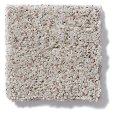 Shaw Floors Anso Open III (b) Sandstone 00153_E0994