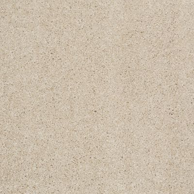 Shaw Floors Value Collections Xvn04 Sandy Shore 00101_E1234