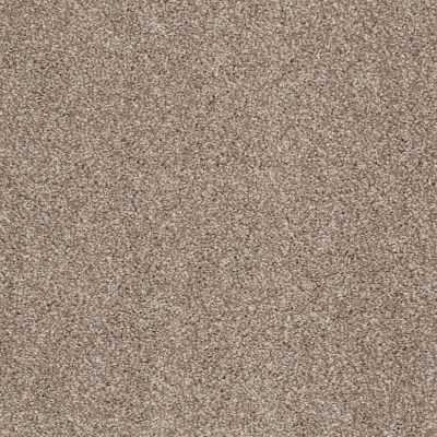 Shaw Floors Value Collections Xvn05 (t) Sombrero 00710_E1237