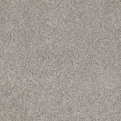 Shaw Floors Value Collections Xvn05 (t) Cocoa 00712_E1237