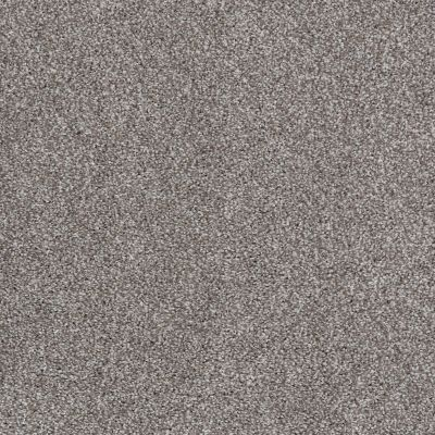 Shaw Floors Value Collections Xvn05 (t) Rice Pilaf 00713_E1237