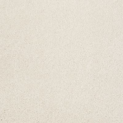 Shaw Floors Value Collections Xvn06 (s) Royal Silk 00100_E1238