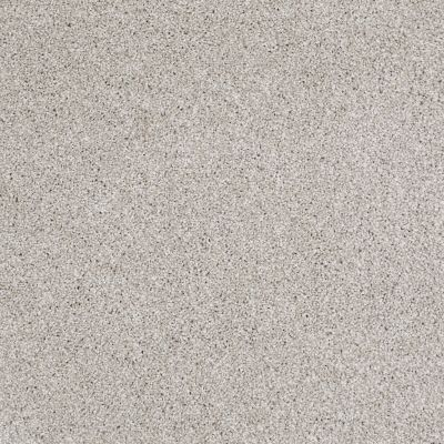 Shaw Floors Value Collections Xvn06 (t) Antique Satin 00115_E1239