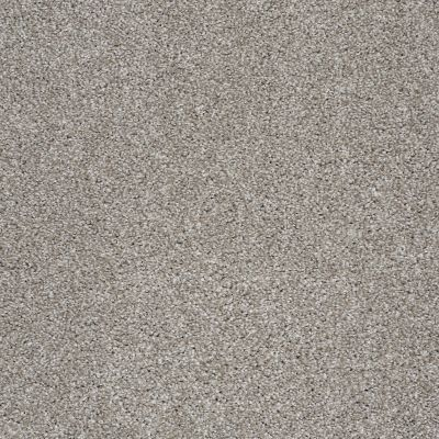 Shaw Floors Value Collections Xvn06 (t) Cocoa 00712_E1239