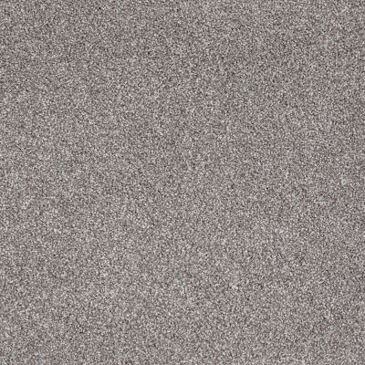 Shaw Floors Value Collections Xvn06 (t) Rice Pilaf 00713_E1239