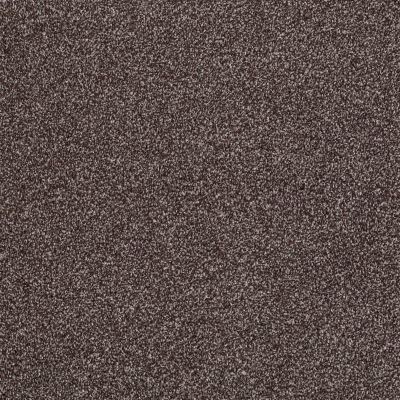 Shaw Floors Value Collections Xvn06 (t) Fudge Ripple 00717_E1239