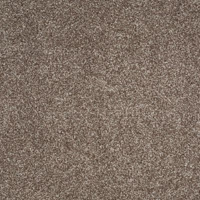 Shaw Floors Value Collections Xvn06 (t) Saddle 00718_E1239