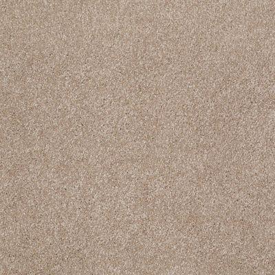 Shaw Floors Value Collections Xvn07 (s) Havana 00701_E1240