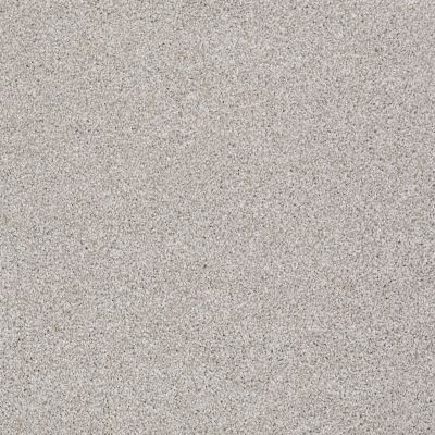 Shaw Floors Value Collections Xvn07 (t) Antique Satin 00115_E1241
