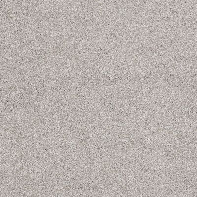 Shaw Floors Value Collections Xvn07 (t) Frosted Ice 00510_E1241