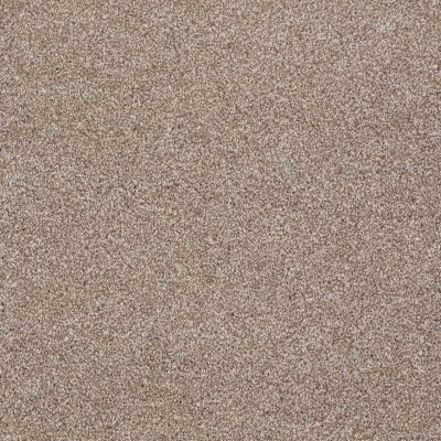 Shaw Floors Value Collections Xvn07 (t) Sombrero 00710_E1241