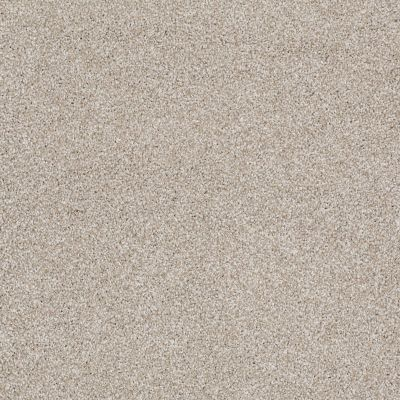Shaw Floors Value Collections Xvn07 (t) Cork Board 00711_E1241