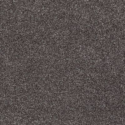 Shaw Floors Value Collections Xvn07 (t) Rich Earth 00715_E1241