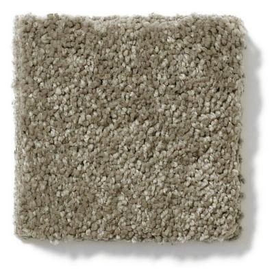 Shaw Floors Vivacious I Fleece 00704_E9008